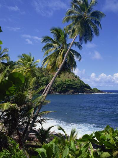 North East Coastline, St. Vincent, Windward Islands, West Indies, Caribbean, Central America-Wood Nick-Photographic Print