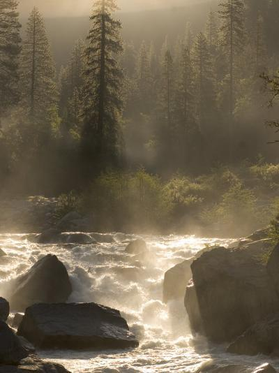 North Fork of the Stanislaus River Near Dorrington at 6,000 Feet-Phil Schermeister-Photographic Print
