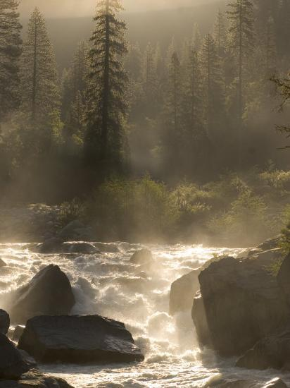North Fork of the Stanislaus River Near Dorrington at 6,000 Feet-Phil Schermeister-Photographic Print
