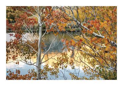 North Lake Sunrise- Mertz-Giclee Print