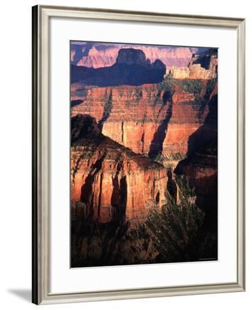North Rim, as Seen from Imperial Point Lookout, Arizona-Mark Newman-Framed Photographic Print