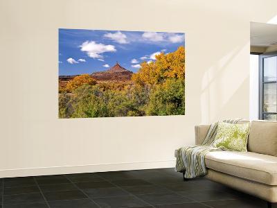 North Six Shooter Peak Framed With Yellow Fall Cottonwoods, Utah, USA-Bernard Friel-Wall Mural