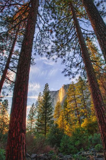 North View Through The Trees, Firefall, Horsetail Falls, Yosemite National Park-Vincent James-Photographic Print