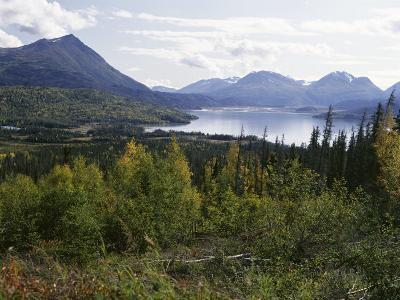 Northern Coniferous Forest Around Lake Skilak on the Kenai Peninsula, Alaska, USA-Jeremy Bright-Photographic Print