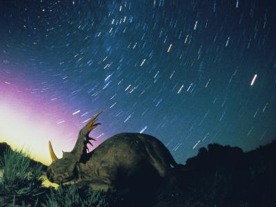 Northern Lights and Meteor Trails over a Replica of a Styracosaurus-Jonathan Blair-Photographic Print
