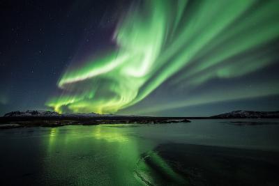 Northern Lights/Aurora Borealis-nurdugphotos-Photographic Print