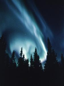 Northern Lights in Night Sky
