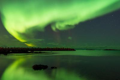 Northern Lights Near Eggum, Aurora Borealis, Eggum, Lofoten, Norway-Sonja Jordan-Photographic Print