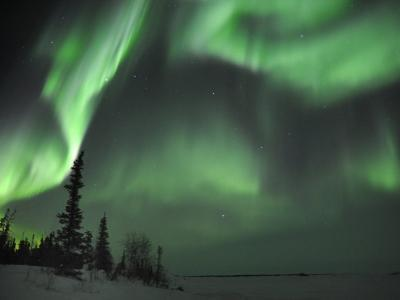 Northern Lights Northwest Territories, March 2008, Canada-Eric Baccega-Photographic Print