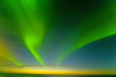 Northern Lights over the Sea, Beaufort Sea, ANWR, Alaska, USA-Steve Kazlowski-Photographic Print