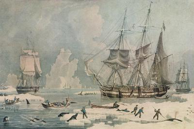 Northern Whale Fishery, c1829-Edward Duncan-Giclee Print