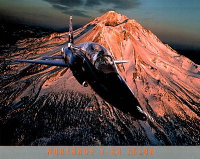 Northrop T-38 Talon Art Print POSTER USA patriotic Army