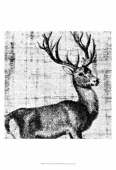 Northwest Territory I--Art Print