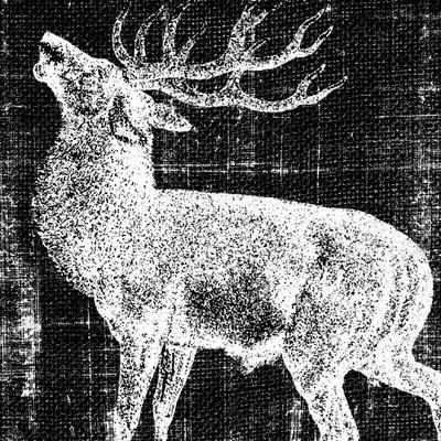 https://imgc.artprintimages.com/img/print/northwest-territory-ii_u-l-q11aviv0.jpg?p=0