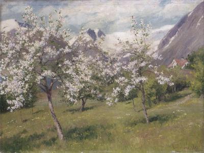 Norvège, verger en fleur (Harland) .1898-Johannes Martin Grimelund-Giclee Print
