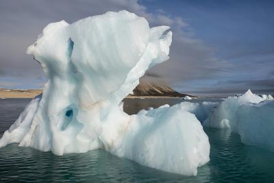 Norway, Barents Sea, Palander Bay, Zeipelodden. Large Iceberg in Palander Bay-Cindy Miller Hopkins-Photographic Print