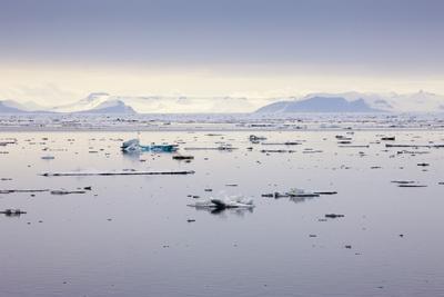 https://imgc.artprintimages.com/img/print/norway-spitsbergen-drift-ice_u-l-q11w2zk0.jpg?p=0