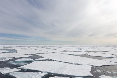 Norway, Svalbard, Pack Ice, Pack Ice-Ellen Goff-Photographic Print