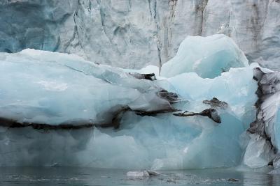 Norway. Svalbard. Spitsbergen. Hornsund. Brepollen-Inger Hogstrom-Photographic Print