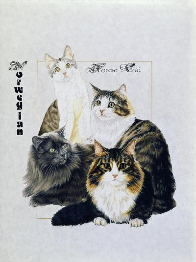 Norwegin Forest Cat-Barbara Keith-Giclee Print