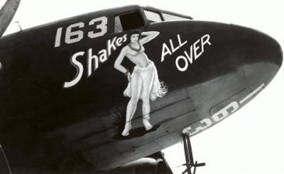Nose Art, Shake All Over, Hula Girl