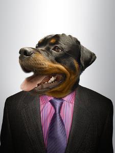 Rottweiler Dog Dressed Up As Formal Business Man by Nosnibor137