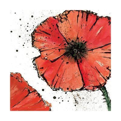 Not a California Poppy on White IV-Chris Paschke-Art Print
