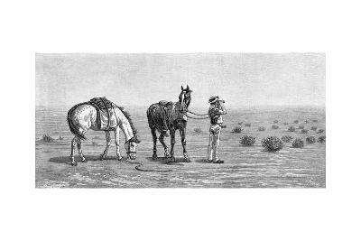 Nothing in Sight, 1886-Frank P Mahony-Giclee Print