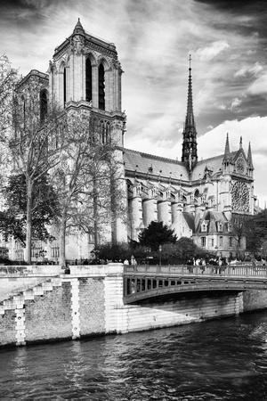 https://imgc.artprintimages.com/img/print/notre-dame-cathedral-paris-france_u-l-pz11yt0.jpg?p=0