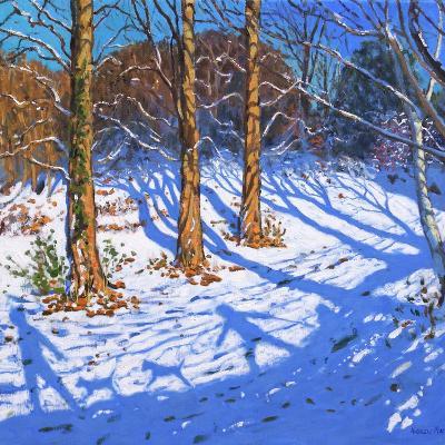 November Snow, Allestree Park, Derby, 2017-Andrew Macara-Giclee Print