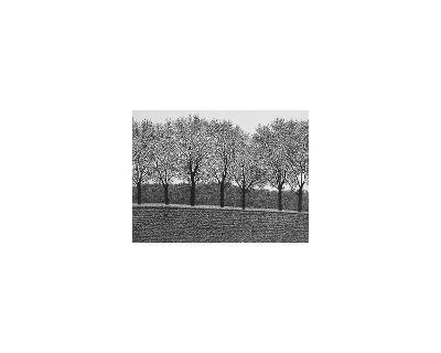 November-Michael Rausch-Limited Edition