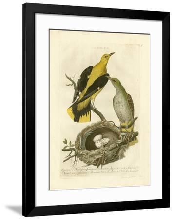 Nozeman Birds & Nests II-Nozeman-Framed Giclee Print