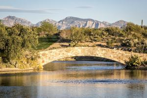 Desert Bridge in Tucson, Arizona by NSirlin