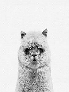 Alpaca 2 by NUADA