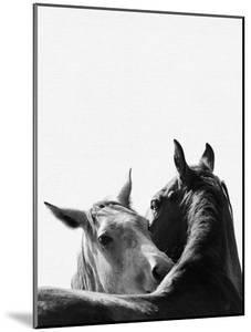 Horses In Love by NUADA