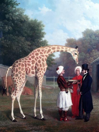 Nubian Giraffe-Jacques-Laurent Agasse-Premium Giclee Print