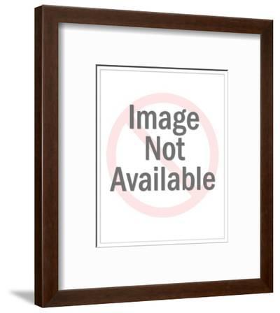 Nude Beach - Cartoon-Mick Stevens-Framed Premium Giclee Print