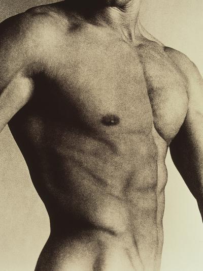 Nude Man's Torso-Cristina-Photographic Print