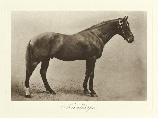 Nunthorpe-Clarence Hailey-Art Print