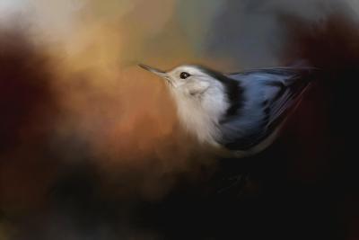 Nuthatch in Autumn-Jai Johnson-Giclee Print