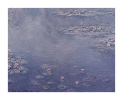 https://imgc.artprintimages.com/img/print/nympheas-1906_u-l-f582qo0.jpg?p=0