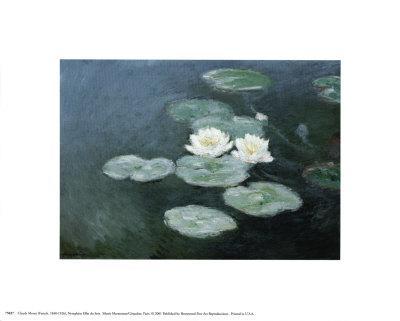 https://imgc.artprintimages.com/img/print/nympheas-effet-du-soir_u-l-e6mh80.jpg?p=0