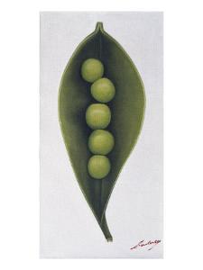 Green Things 2 by Nyoman Sudarsa