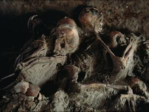 A Close View of Embracing Skeletons Excavated on Herculaneums Beach by O. Louis Mazzatenta