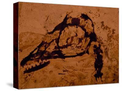 Earliest Known Bird Nestling Which Has Dinosaur-Like Skull and Teeth