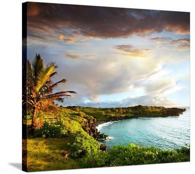 Oahu island--Stretched Canvas Print