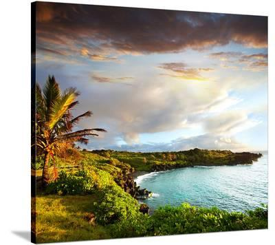 Oahu island--Stretched Canvas Print