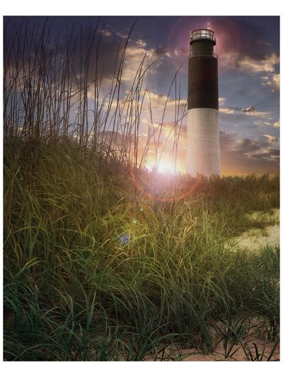 Oak Island II-Steve Hunziker-Art Print
