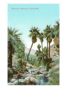 Oasis Near Borrego Springs, California