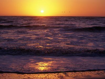 Ocean Beach at Sunset, San Francisco, CA-Daniel McGarrah-Photographic Print